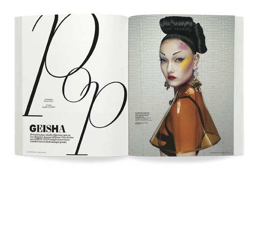 6_website_geisha